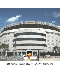 Tav the Duck at The Old Yankee Stadium T-Shirt